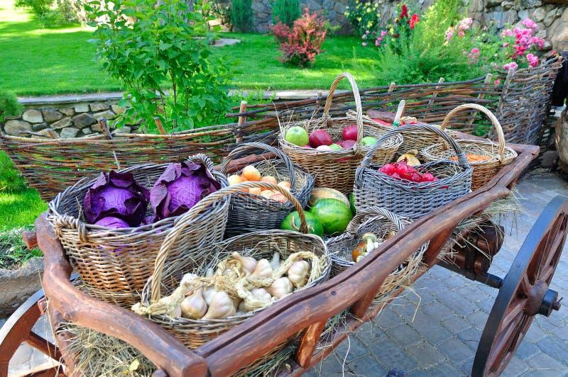 Een kar met oogst van groenten royalty-vrije stock afbeeldingen