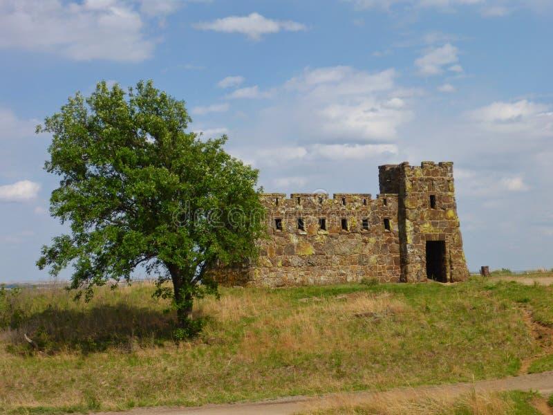Een kasteel binnen achter een boom stock fotografie
