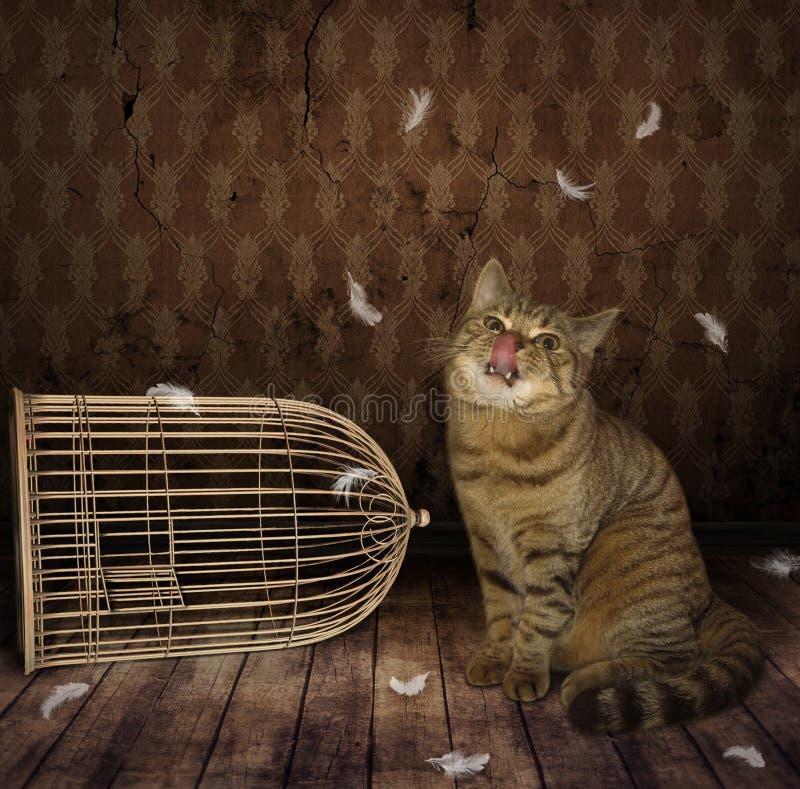 Een kat en een vogel royalty-vrije stock afbeeldingen