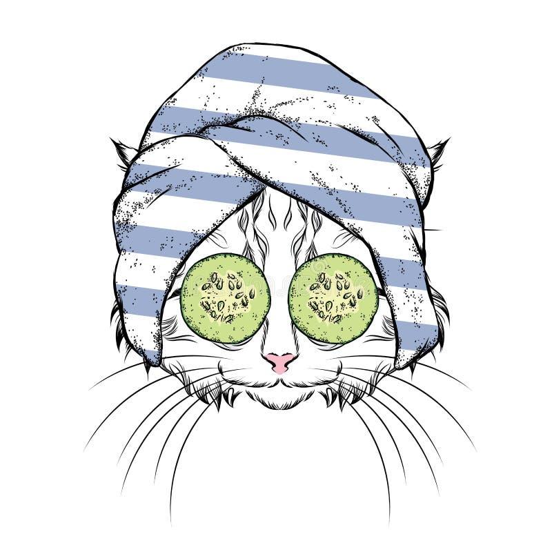 Een kat in een handdoek en met komkommer op zijn gezicht Vector illustratie Schoonheid en kuuroordbehandelingen Manier & Stijl Gr vector illustratie