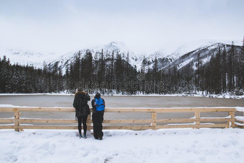 Een kerel en een meisje bekijken het bevroren meer stock fotografie