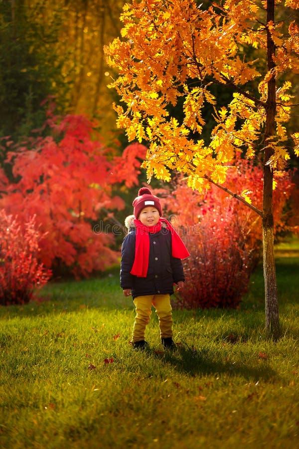Een kind loopt in de herfst in het park - een het glimlachen jongenstribunes B royalty-vrije stock afbeeldingen