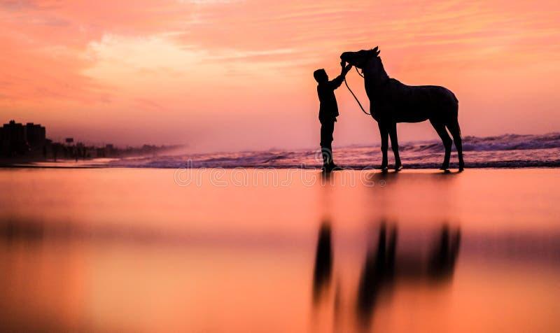 Een kind met een paard bij zonsondergang stock foto's