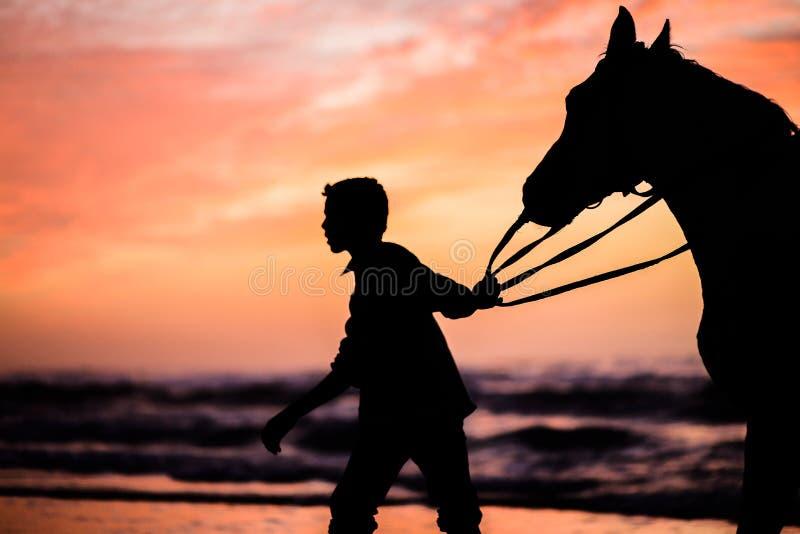 Een kind met een paard bij zonsondergang royalty-vrije stock fotografie