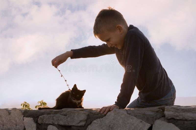 Een kind speelt met een katje Boom op gebied Communicatie met dieren Blije jongen royalty-vrije stock foto