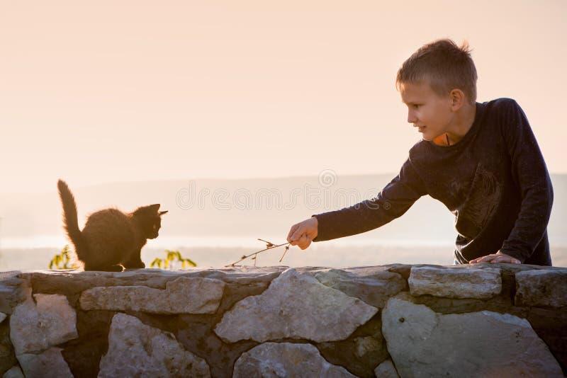 Een kind speelt met een katje Boom op gebied Communicatie met dieren Blije jongen royalty-vrije stock foto's