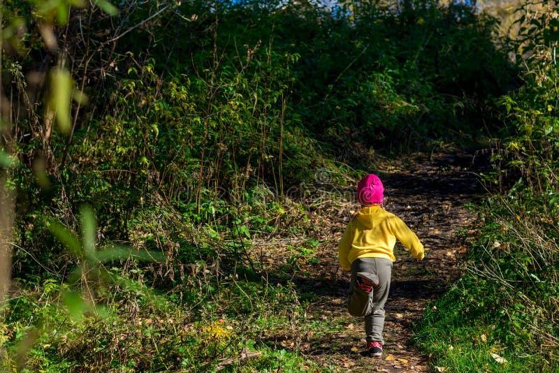 Een kind, in warme kleren en een rode GLB-looppas weg langs de weg in het donkere de herfstbos royalty-vrije stock afbeeldingen