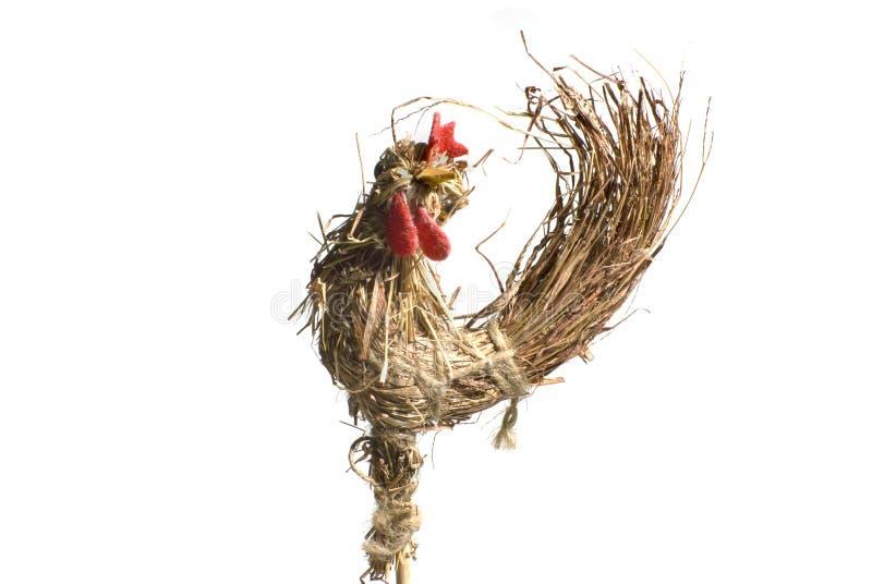 Een kip stock foto