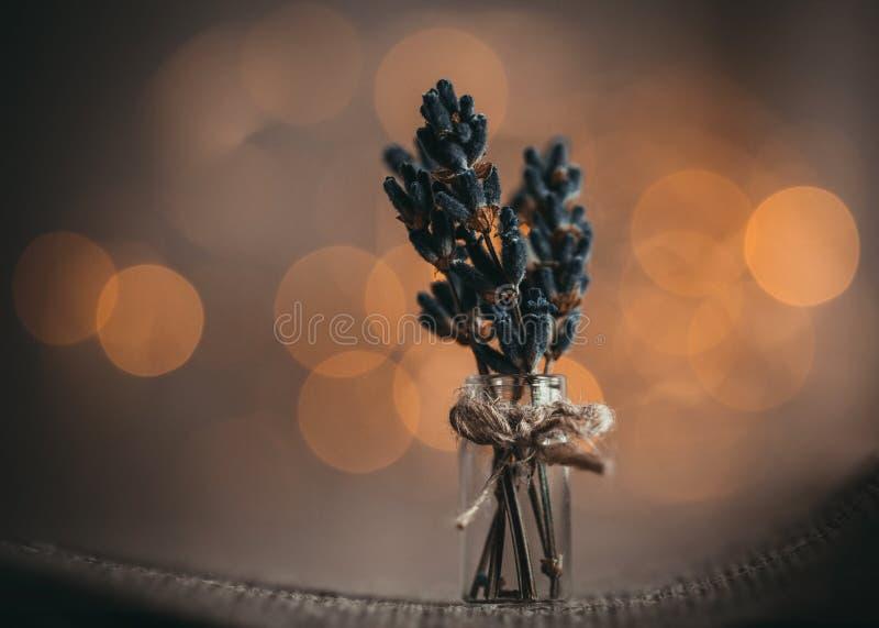 Een klein boeket van lavendel bloeit op een bruine achtergrond met Gouden gele bokeh lichte dichte omhooggaand Bos van lavendel i royalty-vrije stock afbeeldingen