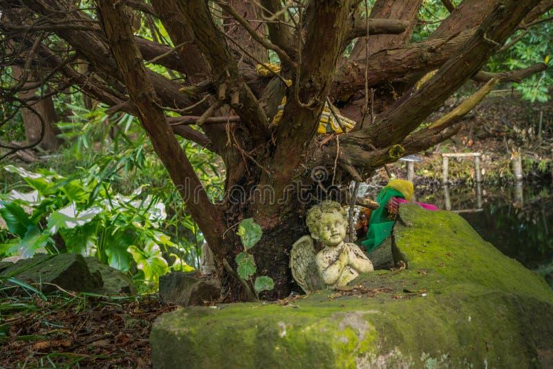 Een klein engelenstandbeeld onder een grote boom in een tuin royalty-vrije stock afbeelding