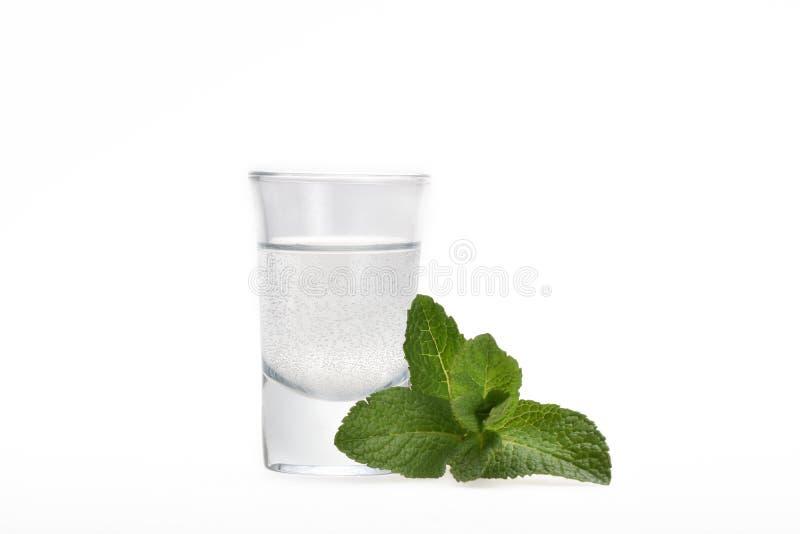 Een klein glas met alcohol en een twijg van groene pepermunt royalty-vrije stock fotografie