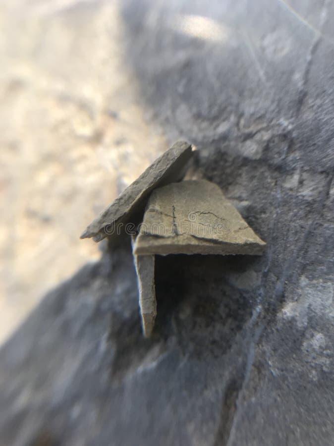 Een klein huis voor mieren 🠐 œ stock afbeeldingen