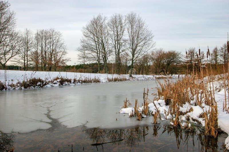 Een klein meer in de winter met ijs en water In het ijskanaal met water stock afbeeldingen