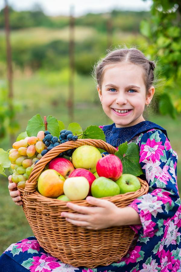 Een klein meisje met een mand, met rode appelen en druiven stock afbeeldingen