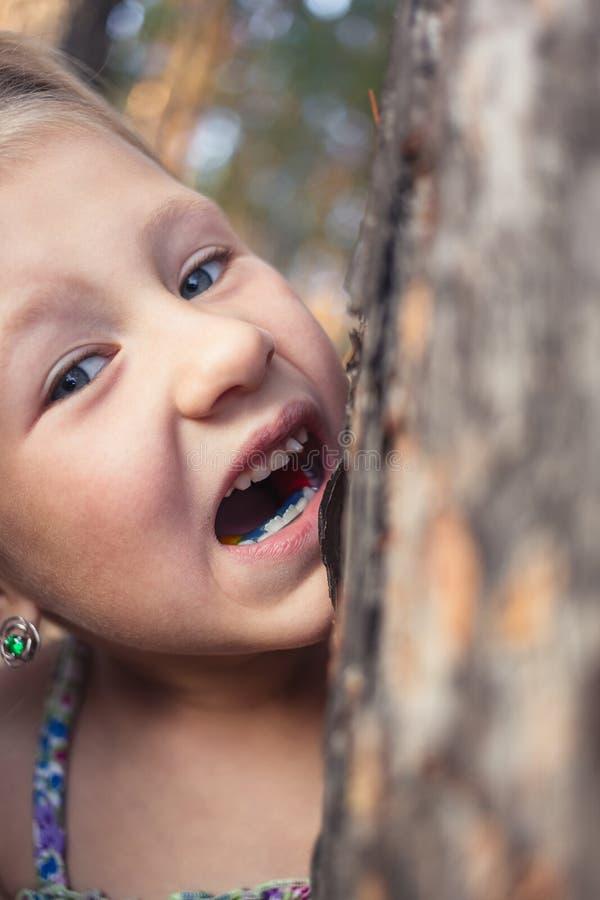 Een klein meisje met een wankel melktand in haar mond probeert om een boomboomstam te bijten stock fotografie