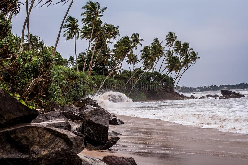 Een klein onweer op het rotsachtige strand van Sri Lanka golven op het wilde strand palmbosje op de Indische Oceaan stock foto's