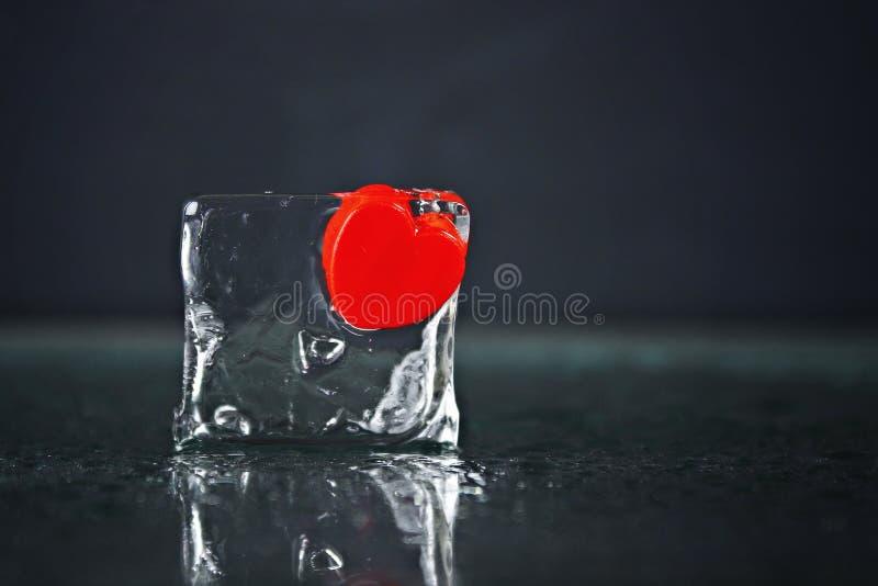 Een klein rood die hart in een ijsblokje wordt bevroren Smeltend ijs, water stock afbeeldingen