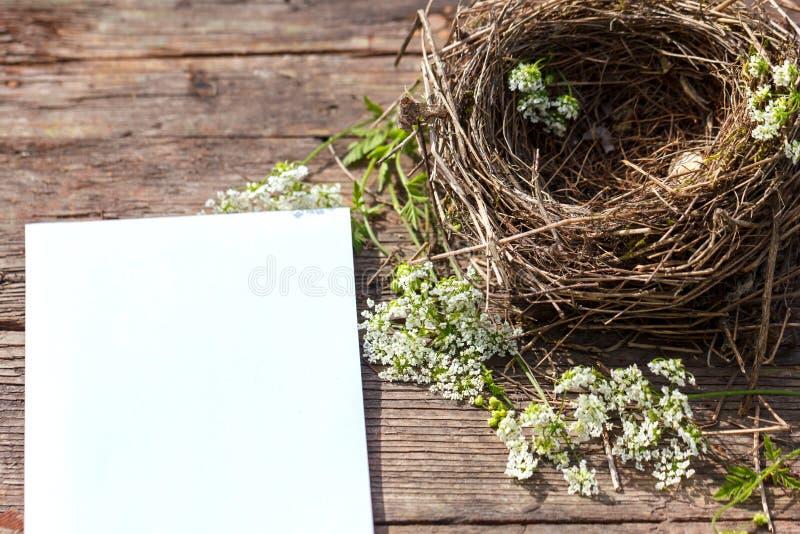 Een klein vogel` s nest ligt op een houten achtergrond en een wit blad van document voor de inschrijving royalty-vrije stock foto's