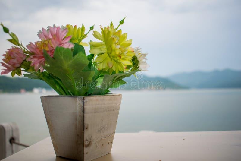Een kleine bloem die in een houten pot is Bij de rug is de grootste rivier in Europa, de Donau royalty-vrije stock afbeelding