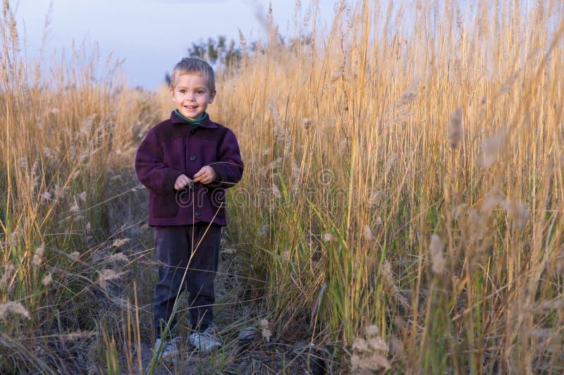 Een kleine jongen bevindt zich amid het lange gras. royalty-vrije stock foto