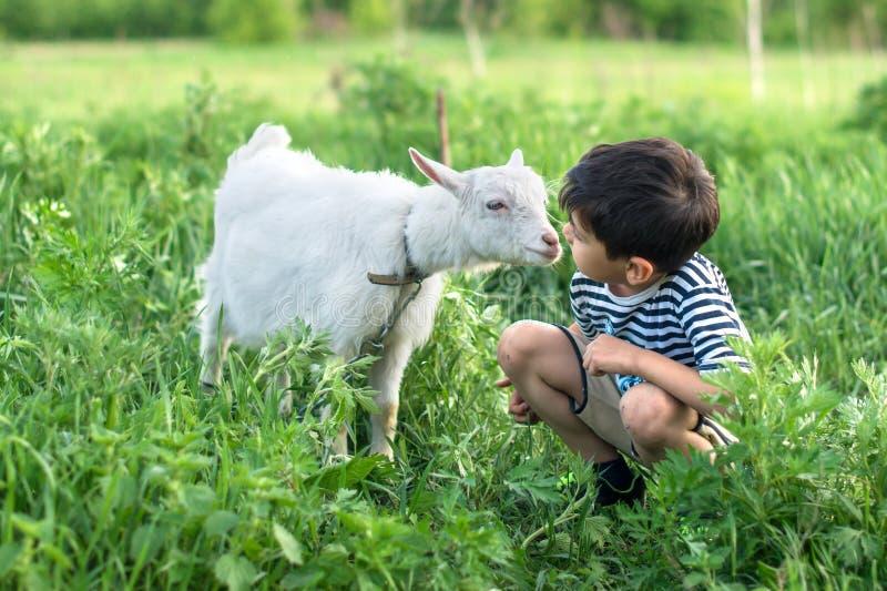 Een kleine jongen die gestript vest dragen hurkt en spreekt aan een witte geit op een gazon op een landbouwbedrijf zij elkaar att stock foto