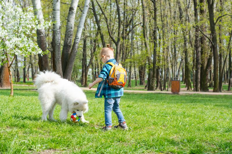 Een kleine jongen met glazen speelt een bal met een witte hond A samoyed hond en een weinig hipster spelvoetbal in het park stock afbeelding