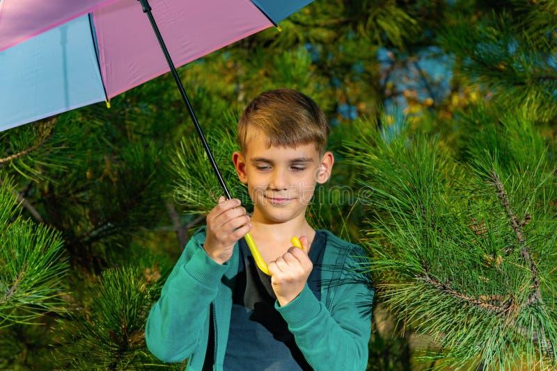 Een kleine jongen is onder een heldere multi-colored paraplu in een pijnboombos royalty-vrije stock foto's