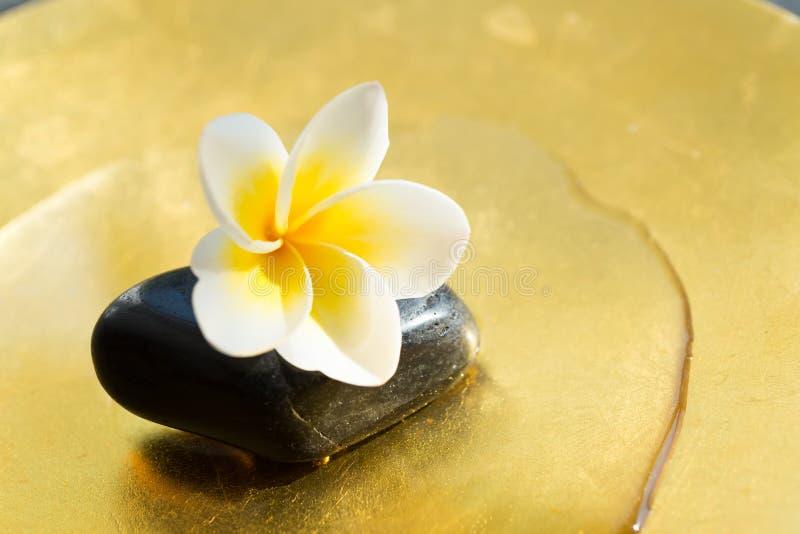 Een kleine maar mooie aanraking van z-en Kiezelstenen en bloemblaadjes tropisch luxe Aziatisch kuuroord in morninngzonlicht royalty-vrije stock afbeelding