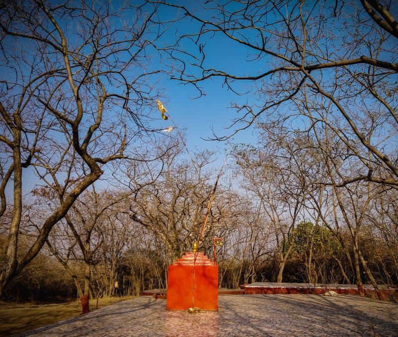 een kleine saffraantempel in de wildernis royalty-vrije stock foto