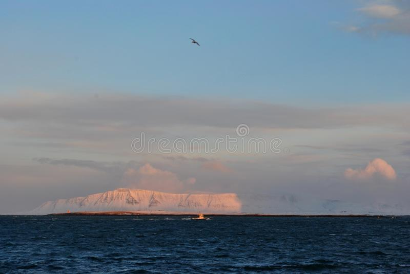 Een kleine sleepboot verzet zich tegen de golven, en de Zeemeeuw bekijkt hierboven het van stock afbeeldingen
