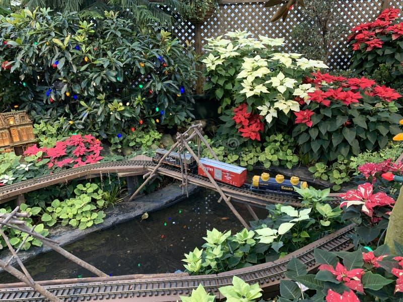 Een kleine trein die pendels door de bloemen in de bloem huisvest royalty-vrije stock fotografie