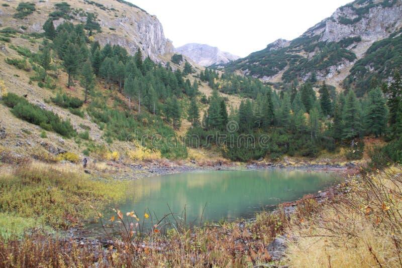 Download Een kleine vijver stock foto. Afbeelding bestaande uit berg - 39101360