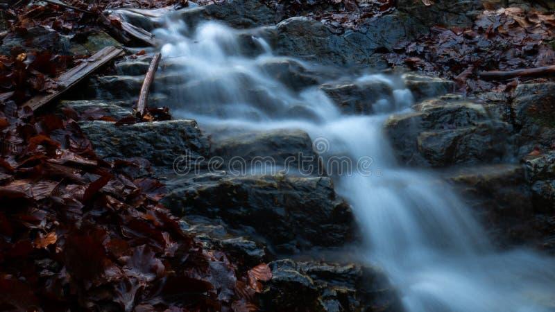Een kleine waterval in het bos in de Oekraïne royalty-vrije stock afbeeldingen