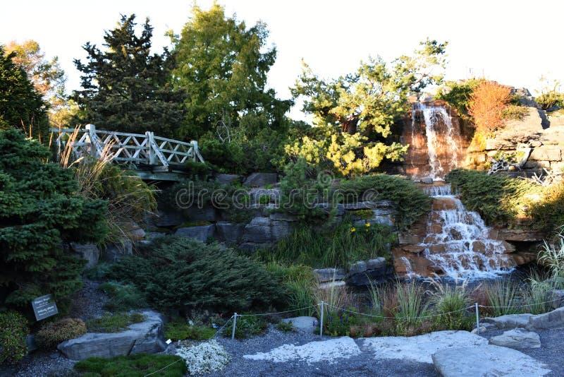 Een kleine waterval in een park stock foto's