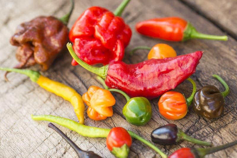 Een kleurrijke mengeling van de heetste Spaanse peperpeper stock afbeeldingen