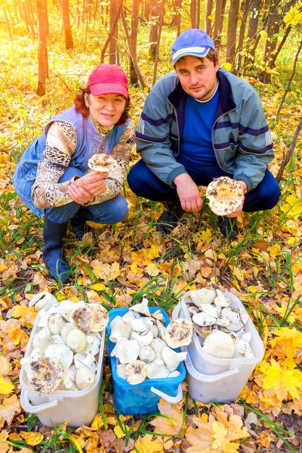 Een knappe man en een vrouw met een rijke oogst van wit moerasland i in het bos stock foto's
