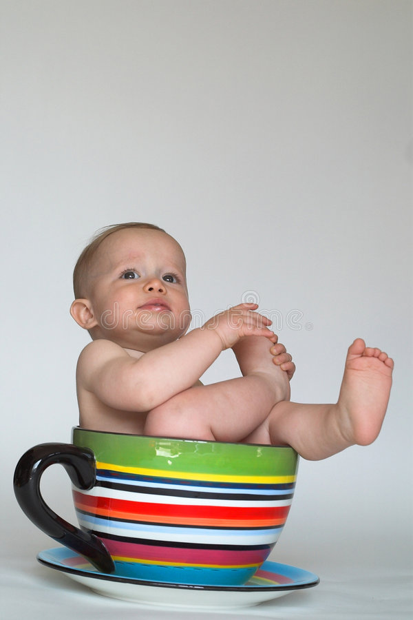 Een kop van Baby royalty-vrije stock afbeeldingen