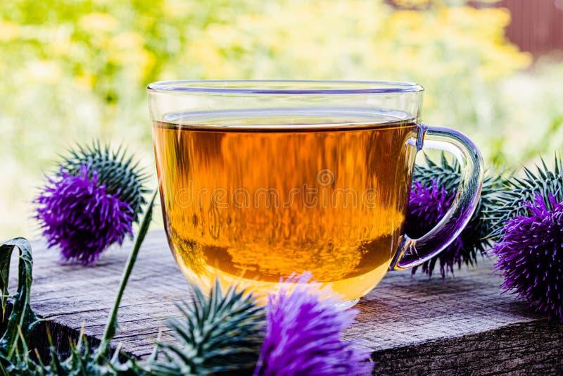 Een kop van distelthee op een bosrijke achtergrond op aard De distel bloeit dichtbij de kop met thee royalty-vrije stock afbeelding
