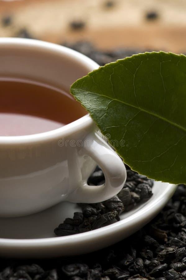 Een kop van groene thee met freh gaat weg royalty-vrije stock fotografie