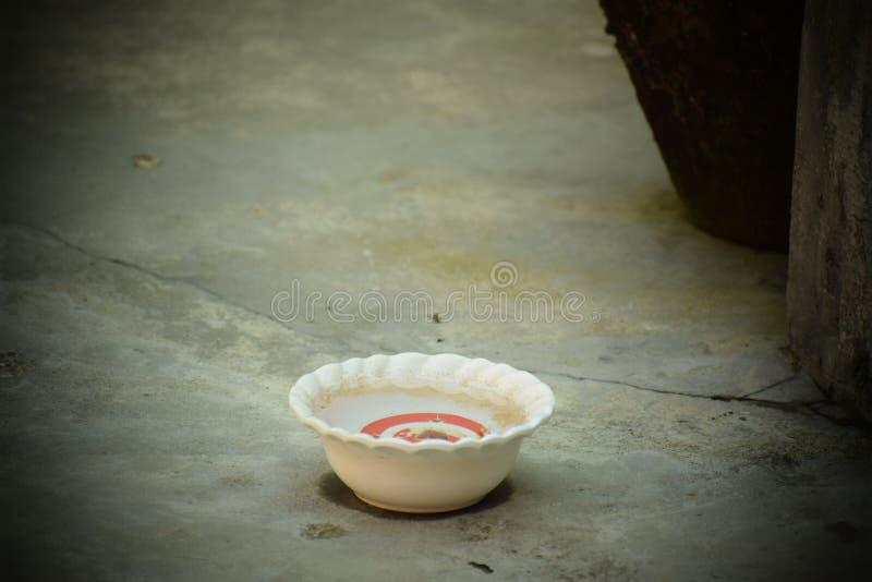 Een kop van water voor Vogels royalty-vrije stock afbeelding