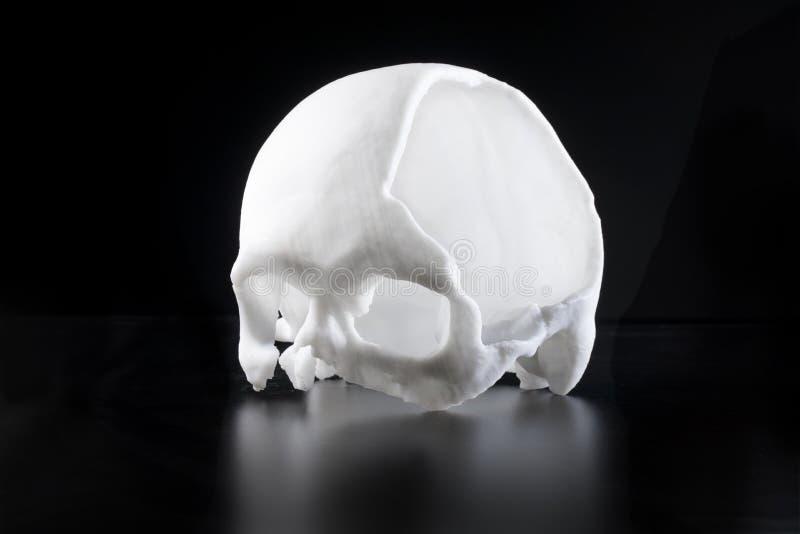 Een kunstmatige schedel stock foto