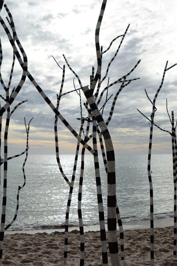 Een kunstwerk bij Beeldhouwwerk door het overzees Het Strand van Cottesloe perth Westelijk Australië stock foto's