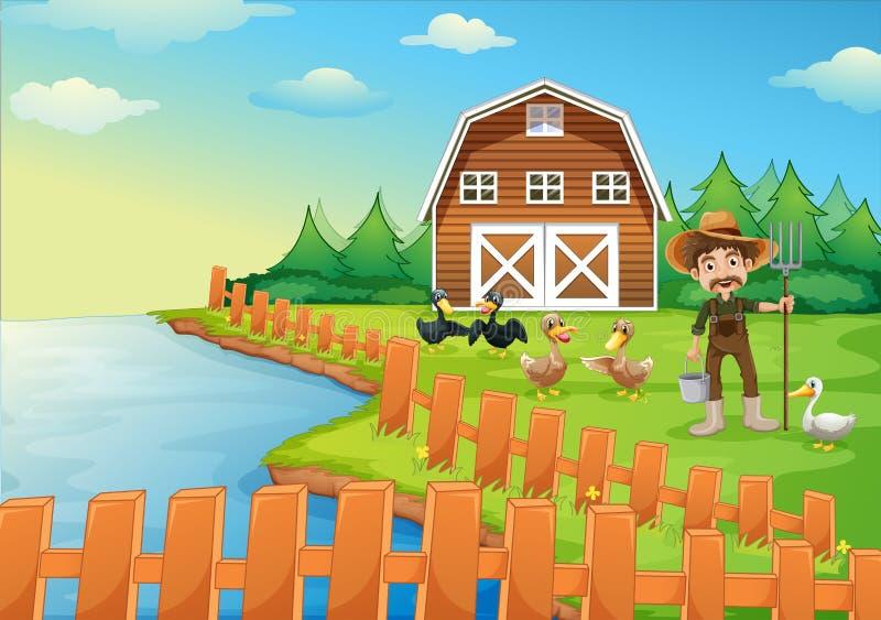Een landbouwer die zijn eenden voeden vector illustratie