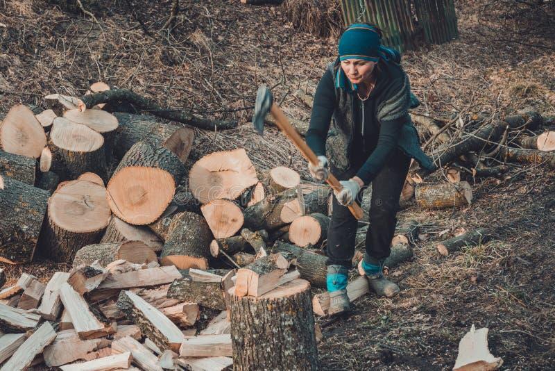Een landelijke vrouw schiet een hout van de asboom voor het oogsten voor de winter met een bijl stock foto