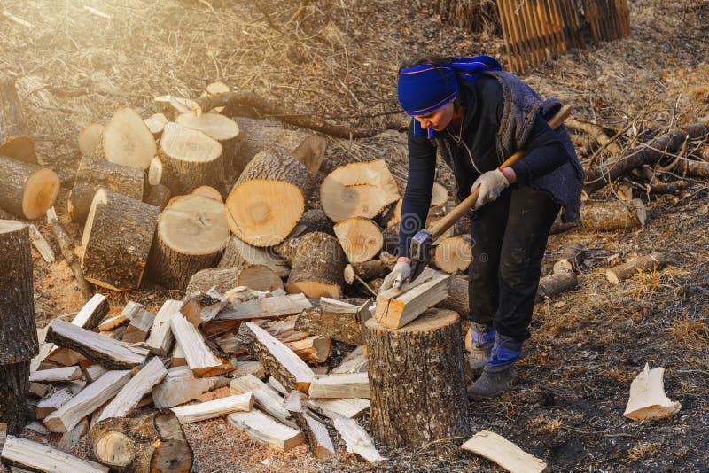 Een landelijke vrouw schiet een hout van de asboom voor het oogsten voor de winter met een bijl stock afbeelding