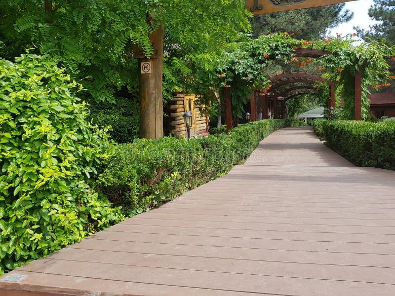 Een landschap die een terras overzien Op het terras kunt u de mening aan de bloemboog merken Een weg met veel groen en hout stock afbeeldingen