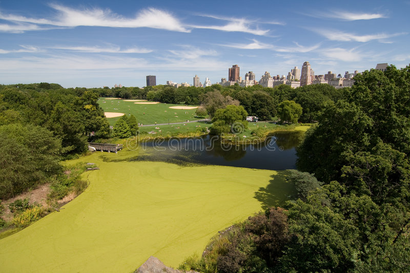 Een landschap van Central Park stock foto
