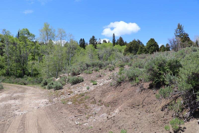 Een landweg in de bergen bij Militair Summit Utah royalty-vrije stock foto's
