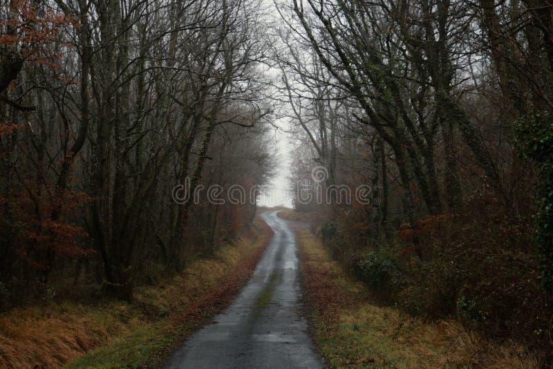 Een landweg door een bos in het Franse platteland royalty-vrije stock foto's