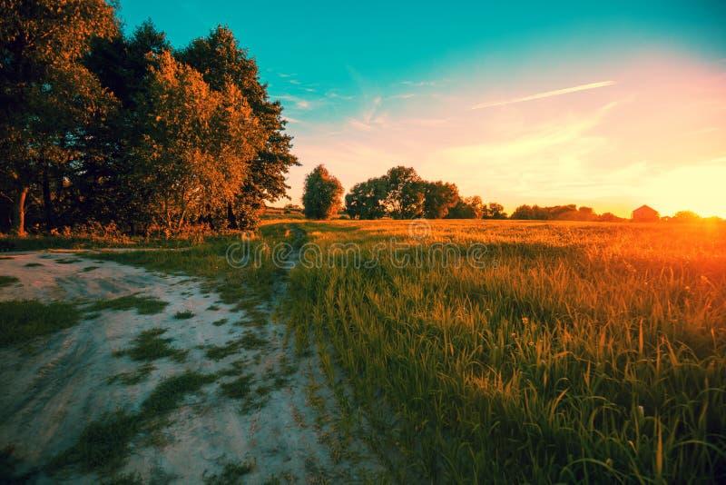 Een landweg langs het gebied bij zonsondergang stock afbeeldingen